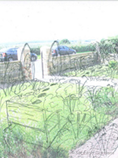A pencil sketch drawn over a photo of a front garden to illustrate an enticing vision of the future garden